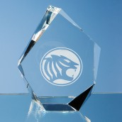 personalised iceberg award